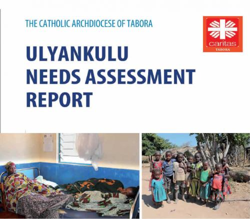 Ulyankulu needs assessment report
